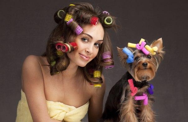 девушка и собака в бигуди